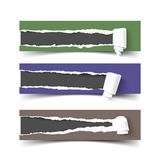 Set of three vector torn paper banners with rolls Royalty Free Stock Images