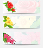 Set of three web banners with bouquets of flowers. Red roses bud, yellow daffodils and pink orchid. Royalty Free Stock Photography