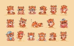Set of Tiger cubs Royalty Free Stock Photos