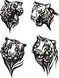 Set of tiger heads Stock Photo