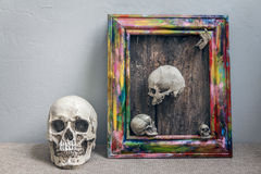 Set of tiny skulls in colorful wooden frame Royalty Free Stock Photography