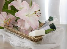 Set of toiletries Royalty Free Stock Images