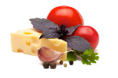 Set for tomato sauce Stock Images