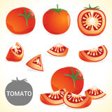 Set of tomato in various styles  format Royalty Free Stock Photo