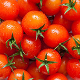 Set tomatoes closeup Royalty Free Stock Photo