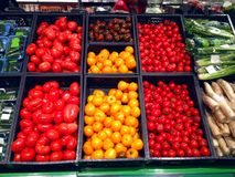 Set of tomatoes red, orange in supermarket Royalty Free Stock Photography