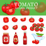 Set of tomatoes and sauces. Vegetable banner and a set of tomatoes and sauces ketchup. Vector illustration Stock Photography