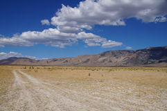 Set of tracks leading toward the future and uncertainty in high desert with cloud covered mountains Royalty Free Stock Photos