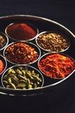 Set tradycyjne indyjskie pikantność w metalu rzuca kulą na czarnym tle zdjęcia royalty free