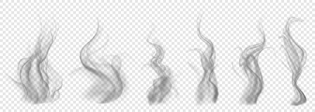 Set of translucent gray smoke. On transparent background. For used on light backgrounds. Transparency only in vector format Stock Images