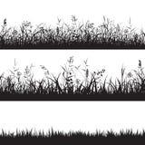 Set traw bezszwowe granicy Czarna sylwetka trawa, kolce i ziele, wektor ilustracja wektor