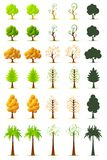 Set of Tree Royalty Free Stock Photo