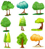 Set of  tree Royalty Free Stock Images