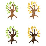 Tree 11. A set of tree icons Stock Photography