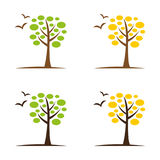 Tree6. A set of tree icons Stock Images
