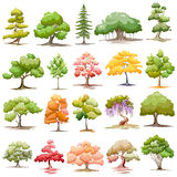 Set of Tree Stock Image