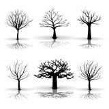 A set of tree Stock Image
