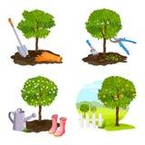 Set of tree planting, work in the garden vector illustration