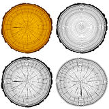 Set tree rings saw cut tree trunk background Royalty Free Stock Photography