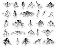 Set of tree roots. Roots silhouette vector Illustration stock illustration