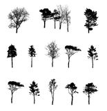 Set of Tree Silhouette Isolated on White Stock Photos