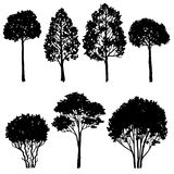 Set of tree silhouettes Stock Photography