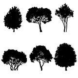 Set of tree silhouettes Royalty Free Stock Photo