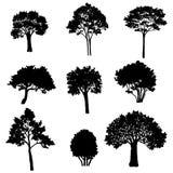 Set of tree silhouettes Royalty Free Stock Photos