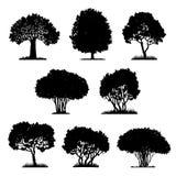 Set of tree silhouettes Stock Image
