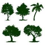 Set tree vector illustration    painted Royalty Free Stock Photos
