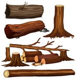 A Set of Tree Wood Stock Image