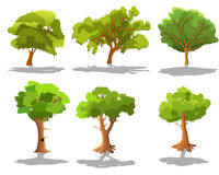 Set of trees Stock Images