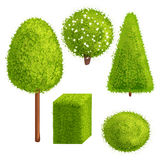 Set trees and bushes. Set green trees and bushes of different forms. Vector illustration. Cartoon style. Deciduous trees Stock Image