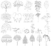 Set of trees, bushes, plants. Side view. Drawing on a white background Royalty Free Stock Image
