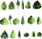 Set of trees drawing by watercolor Stock Photography