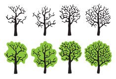 Set of trees with and without foliage, vector Royalty Free Stock Images