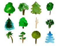 Set of 12 trees isolated on white background, hand-drawn watercolor illustration of pine, fir, willow, palm and other. Set of 12 forest trees isolated on white stock illustration