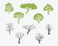 Set Of Trees Silhouettes With Leaves And Bare. Vector Royalty Free Stock Image