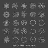 Set of trees. Top view Stock Image