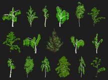 Set of Trees. Vector Stock Image