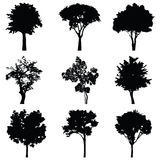Set of trees vector silhouette Royalty Free Stock Photo