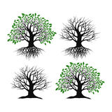 Set of trees on a white background Royalty Free Stock Images