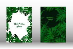 A set of tropic. Tropic covers set.  Colorful tropical leaves patterns. Summer graphic background. Modern Front Page in Vector stock illustration