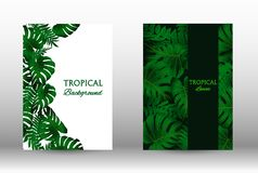 A set of tropic. Tropic covers set.  Colorful tropical leaves patterns. Summer graphic background. Modern Front Page in Vector royalty free illustration