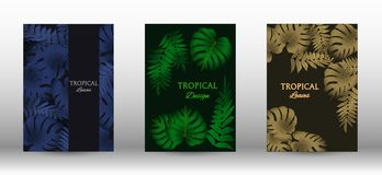 A set of tropic. Tropic covers set.  Tropical leaves banners background. Exotic botanical design. Modern Front Page in Vector stock illustration
