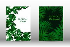 A set of tropic. Tropic covers set.  Colorful tropical leaves patterns. Exotic botanical design. Modern Front Page in Vector royalty free illustration