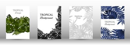 A set of tropic. Al covers. Colorful tropical leaves patterns. Exotic botanical design. Modern Front Page in Vector stock illustration