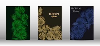 A set of tropic. Al covers. Colorful tropical leaves patterns. Exotic botanical design. Modern Front Page in Vector royalty free illustration