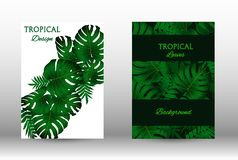 A set of tropic. Al covers. Colorful tropical leaves patterns. Summer graphic background. Modern Front Page in Vector royalty free illustration