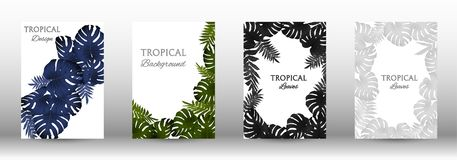 A set of tropic. Al covers. Colorful tropical leaves patterns. Summer graphic background. Modern Front Page in Vector stock illustration